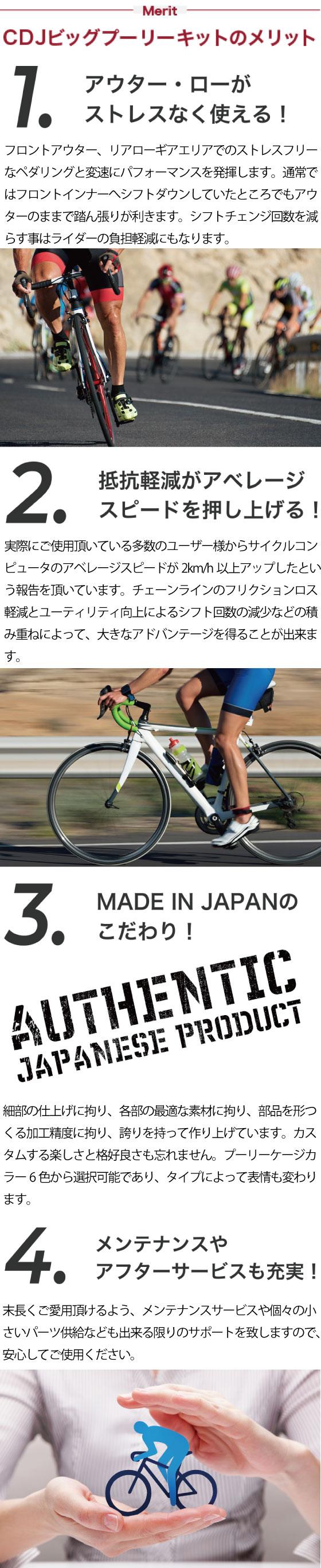 Carbon Dry Japan カーボンドライジャパン