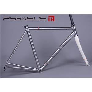 PEGASUS ペガサス 2013 フレームセット サンドブラストモデル (フォーク ホワイト) サイズ44