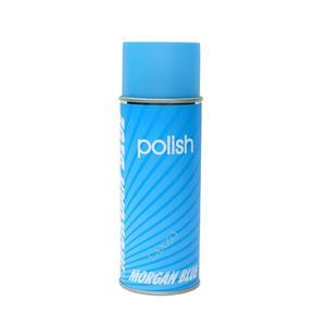 Polish (ポリッシュ)
