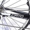 FOCUS (フォーカス) 2015モデル CAYO AL カヨ  105 5800 MIX 11S サイズ51(171-176cm) 完成車 10
