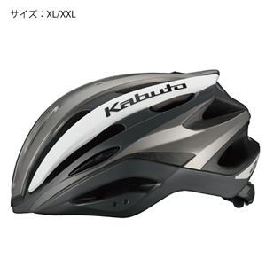 REZZA(レッツァ) G-1マットシルバー XL/XXL ヘルメット
