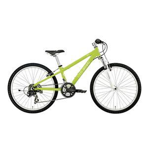 2016モデル LGS-J24 LITE GREEN ライトグリーン 300 【キッズ】 【子供】【自転車】