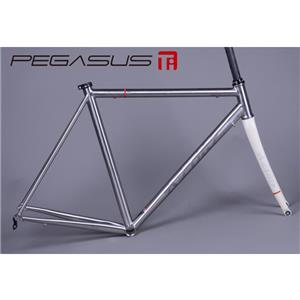 PEGASUS ペガサス 2013 フレームセット サンドブラストモデル (フォーク レッド) サイズ44