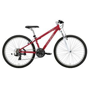 2016モデル LGS-FIVE LG RED LG レッド  完成車 【キッズ】 【子供】【自転車】